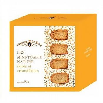 Biscuits apéritifs - Toasts Nature 90G -