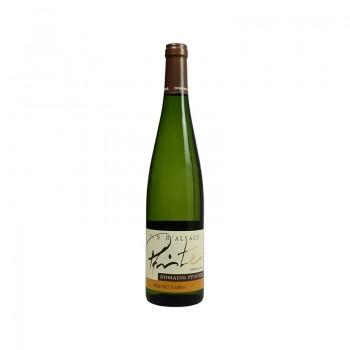 Alsace - AOC Alsace Riesling Tradition 2016 75CL -